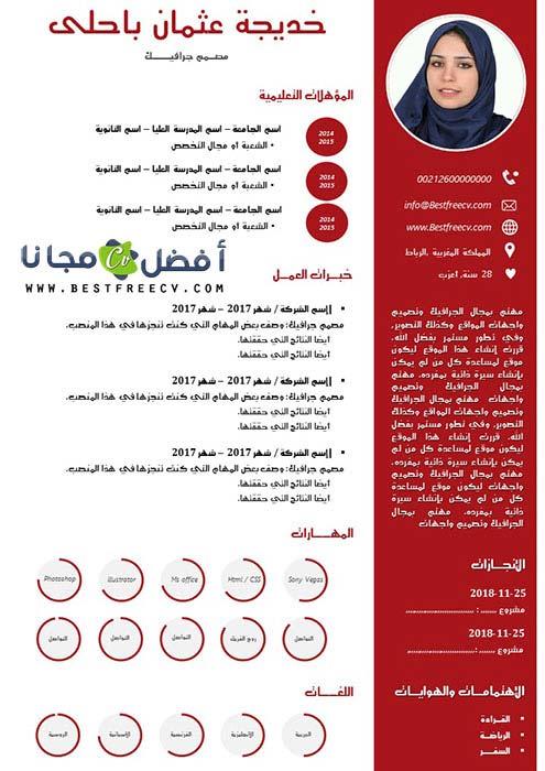 سيرة ذاتية مثالية بالعربية