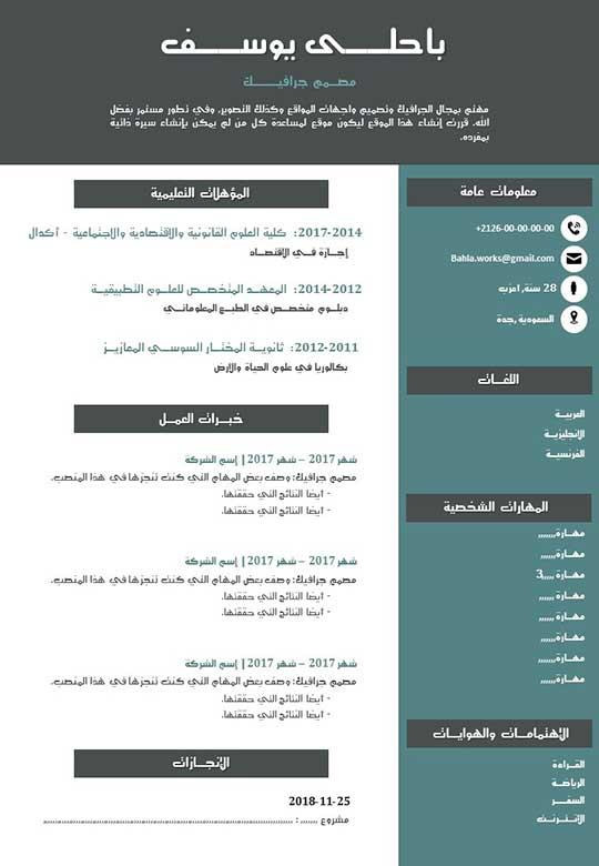 نموذج سيرة ذاتية شبابية PDF